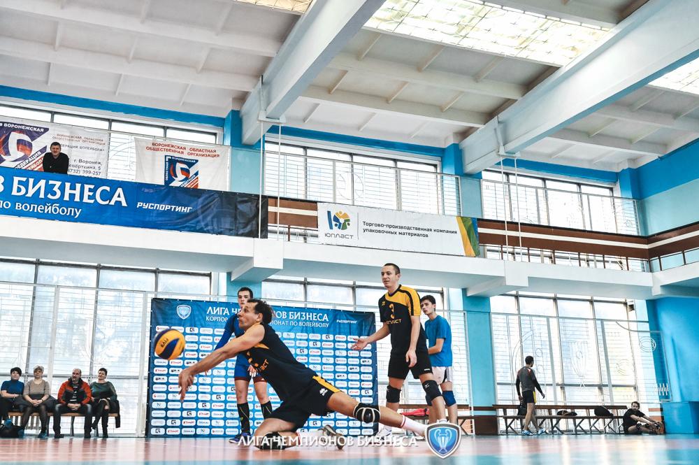 Лига чемпионов бизнеса волейбол